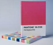 Pantone Postcard 2