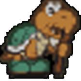 Koopa Koot