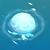 WhiteJellyFish.png