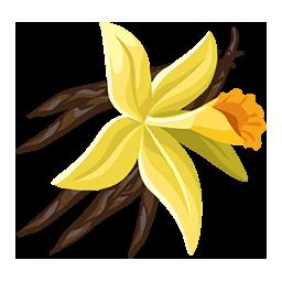 Vanilla paradise bay wikia fandom powered by wikia - Vanille dessin ...