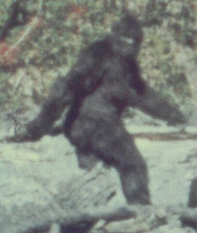 File:0817-bigfoot.jpg