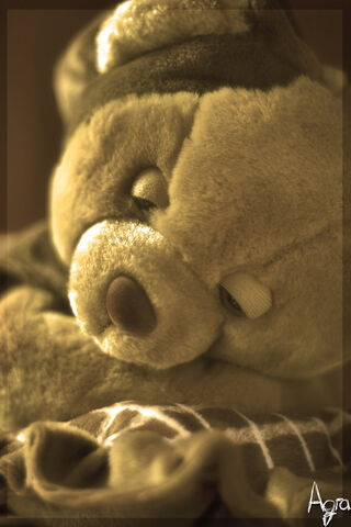 File:Teddy by scorsagra.jpg