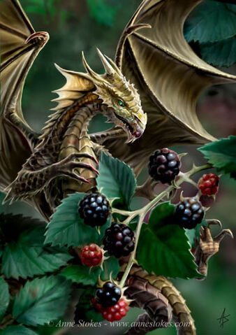 File:Blackberry dragon.jpg