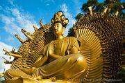 10000 Buddhas Monastery - 009