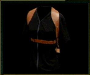 File:Shoulderholstersmall.jpg