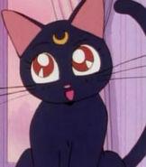 Luna (Sailor Moon TV Series)