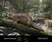 Obdurodon-tharalkooschild-738x591