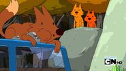 Adventure Time Foxes