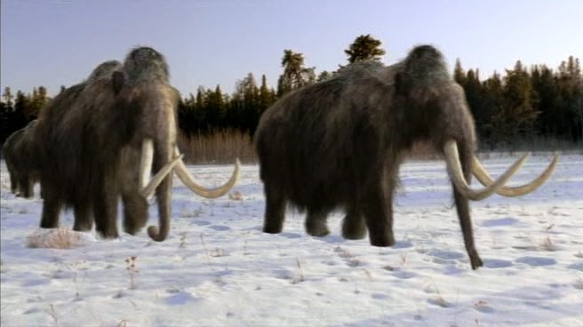 an analysis of the topic of the woolly mammoth Everything with the topic 'mammoth' on motherboard mammoth dna analysis reveals the role of climate change in mammoth the mission to clone the woolly mammoth.