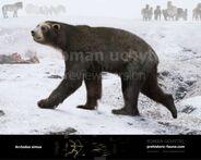 Arctodus-simus-2015-winter-738x591