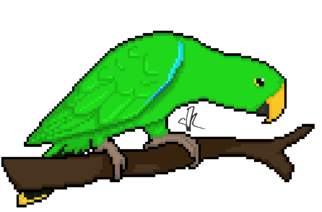 File:Wikia-Visualization-Add-2,parrots.png