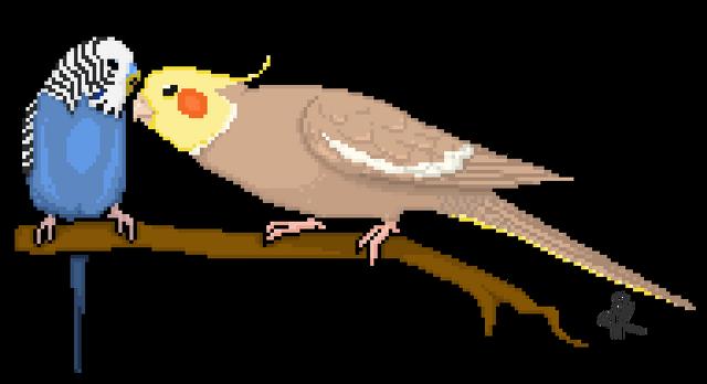 File:Pixel parrots budgie and cockatiel by kadoodles-d60amo7.png