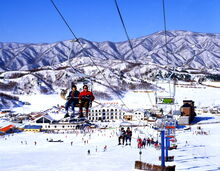 Yonseo Resort