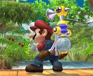 Mario 070906a