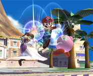 Mario 070906d