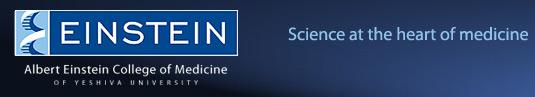 File:Einstein logo.jpg