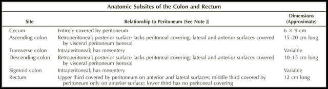 File:Anatomic subsites of colon and rectum.jpg