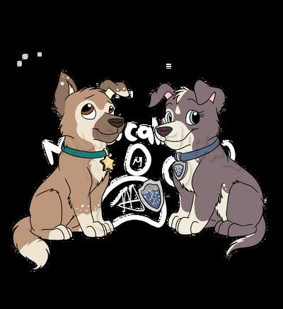 Vega pups