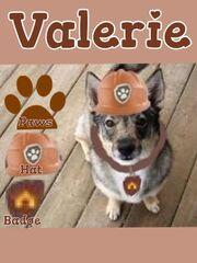 Valerie ref