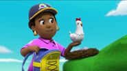 PAW Patrol Pups Save the Songbirds Scene 33