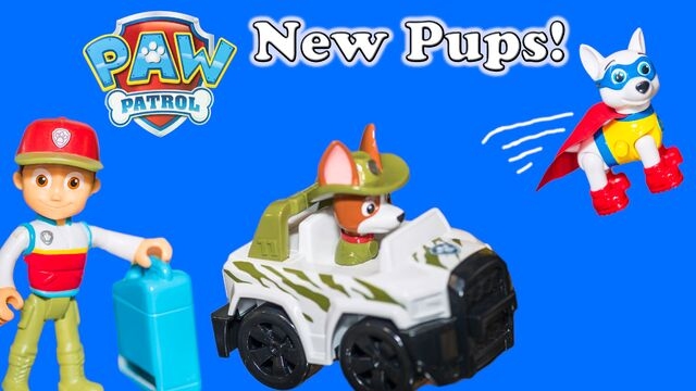 File:New pup.jpg
