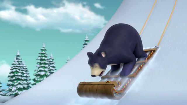 File:Sleepwalking Bear 32.jpg