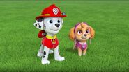 PAW Patrol Pups Save the Songbirds Scene 36