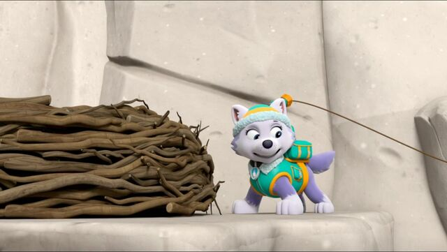 File:All Star Pups! 27.jpg
