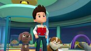 PAW.Patrol.S01E16.Pups.Save.Christmas.720p.WEBRip.x264.AAC 214347