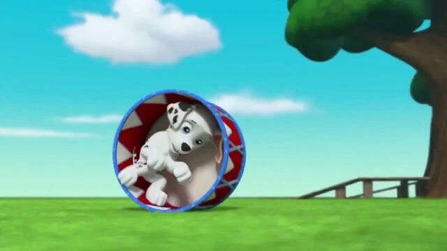 File:PAW Patrol Season 2 Episode 10 Pups Save a Talent Show - Pups Save the Corn Roast 337537.jpg