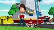 PAW Patrol Pups Save the Songbirds Scene 8