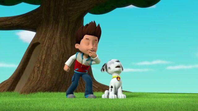 File:PAW Patrol Season 2 Episode 10 Pups Save a Talent Show - Pups Save the Corn Roast 261895.jpg