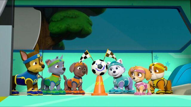 Plik:All Star Pups! 8.jpg