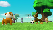 Pups Soccer 4