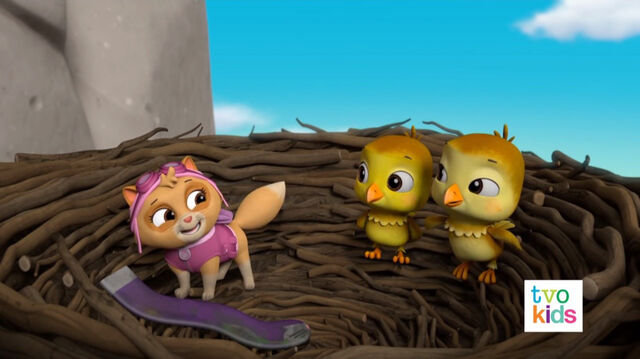 File:PAW Patrol Pups Save a Flying Kitty 23.jpg