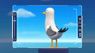 Seagull -LB3