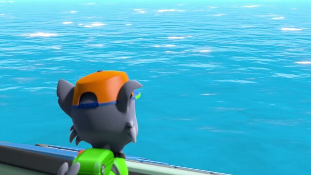 File:PAW.Patrol.S04E19.Pups.Save.A.Baby.Octopus.1080p.NICK.WEB-DL.AAC2.0.x264-RTN 858480.jpg