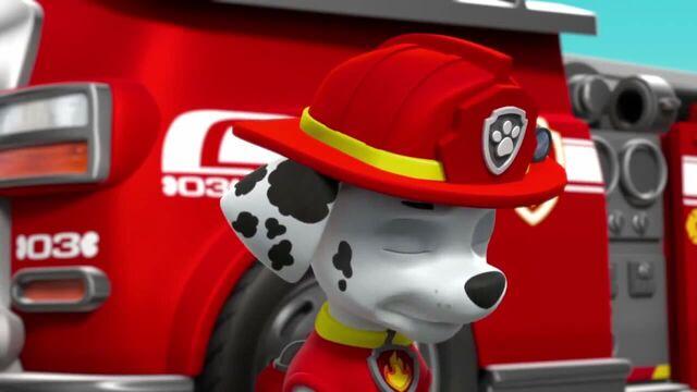 File:PAW Patrol Season 2 Episode 10 Pups Save a Talent Show - Pups Save the Corn Roast 222222.jpg