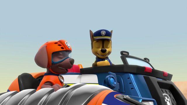 File:PAW.Patrol.S02E07.The.New.Pup.720p.WEBRip.x264.AAC 83383.jpg