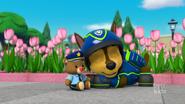 PAW Patrol 316B Scene 57