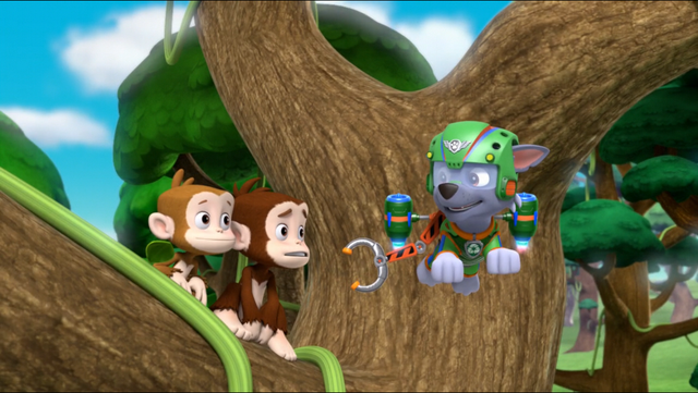 File:PAW Patrol Air Pups Rocky 2.png