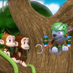 Super Rocky save monkeys