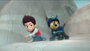 PAW Patrol Pups Save the Songbirds Scene 37