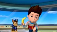 Ryder with Banana
