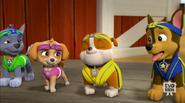 Pup-Fu!62(Rubble gets a belt)
