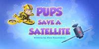 Pups Save a Satellite