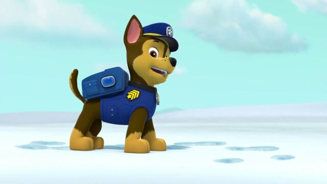 File:PAW.Patrol.S02E07.The.New.Pup.720p.WEBRip.x264.AAC 845511.jpg