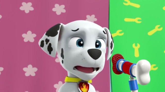 File:PAW Patrol Season 2 Episode 10 Pups Save a Talent Show - Pups Save the Corn Roast 292492.jpg