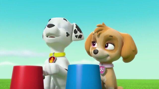 File:PAW Patrol Season 2 Episode 10 Pups Save a Talent Show - Pups Save the Corn Roast 147214.jpg