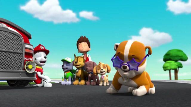 File:PAW Patrol Season 2 Episode 10 Pups Save a Talent Show - Pups Save the Corn Roast 239272.jpg